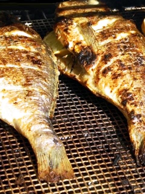 Küchen-Tipps & Tricks (6) – Das Problem mit der Fischhaut auf dem Grill
