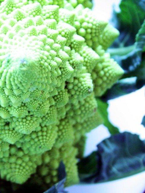Romanesco Gemüse ganzer Kopf